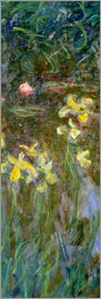 Claude Monet - Daffodils in the field