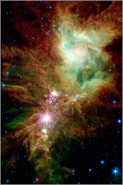 Stocktrek Images - Newborn stars