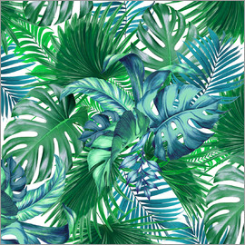 Mark Ashkenazi - new tropic life 2