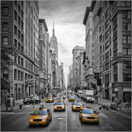 Melanie Viola - NEW YORK CITY 5th Avenue Traffic