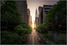 Dennis Fischer - New York sunset in the streets