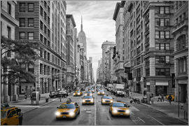 Melanie Viola - NYC 5th Avenue Traffic