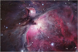 Robert Gendler - Orion Nebula