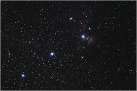 Luis Argerich - Orion's Belt, Horsehead Nebula and Flame Nebula.