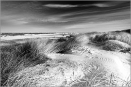 Sascha Kilmer - Baltic Sea Dunes (monochrome)