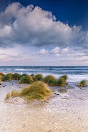 newfrontiers photography - Baltic shore magic morning