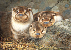 Otter family in the portrait