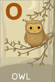 Kidz Collection - O as in Owl