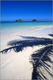 Douglas Peebles - Palm shadow on Lanikai Beach