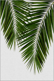 Orara Studio - Palm Leaf II