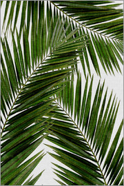 Orara Studio - Palm Leaf III