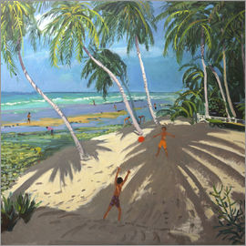 Andrew Macara - Palm trees, Clovelly beach, Barbados