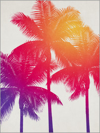 Alex Saberi - palm tree colours