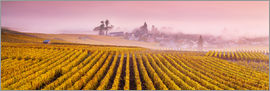 Matteo Colombo - Panoramic of vineyards in autumn near Oger, Champagne, France
