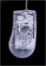 Mark Sykes - Computer mouse, simulated X-ray