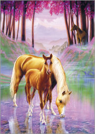 Andrew Farley - Horse and foal