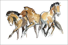 Mark Adlington - Herd of horses