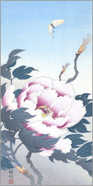 Ohara Koson - Peony with butterfly