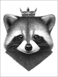 Valeriya Korenkova - Queen raccoon