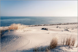 newfrontiers photography - Sand Dunes and the Ocean