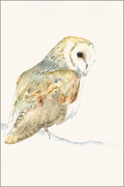 Dearpumpernickel - Barn Owl