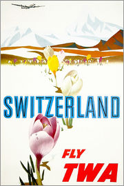 Switzerland fly with TWA