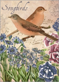 Gail Fraser - Songbirds and flowers