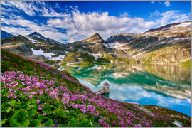 Achim Thomae - Summer at Weisssee Glacier - Austria