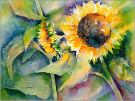 Jitka Krause - Sunflower