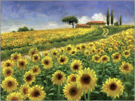 Jay Hurst - Sunflower