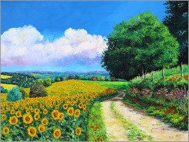 Jean-Marc Janiaczyk - Sunflowers season