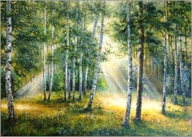 Ludmilla Gittel - Sunlight in the green forest