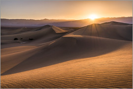 Andreas Wonisch - Sunset at the Dunes in Death Valley