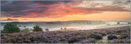 Sander Grefte - Panorama perfect sunrise heath