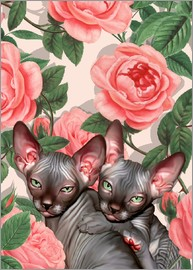 Mandy Reinmuth - Kitten and roses