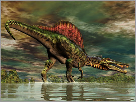 Philip Brownlow - Spinosaurus was a large theropod dinosaur from the Cretaceous period.