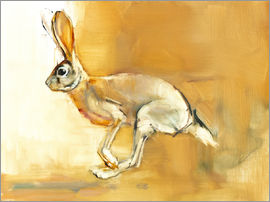 Mark Adlington - Jumping Rabbit