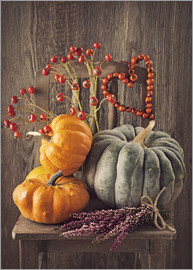 Elena Schweitzer - Still life with the pumpkins