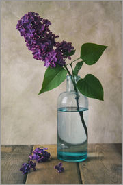 Jaroslaw Blaminsky - Still life with fresh lilac flower