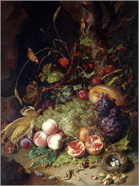 Rachel Ruysch - Still life with fruits and insects