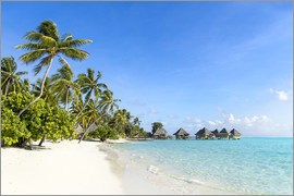 Jan Christopher Becke - Beach vacation on a remote island in the tropics