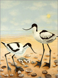 Pat Scott - Beach birds