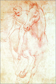 Leonardo da Vinci - Study of a Horse and Rider
