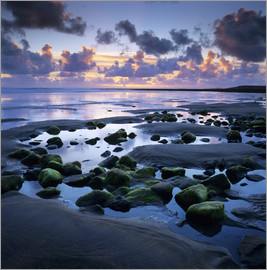 Stuart Black - Sunset over rock pool, Strandhill, County Sligo, Connacht, Republic of Ireland, Europe