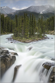 Jon Reaves - Sunwapta Falls in Jasper National Park