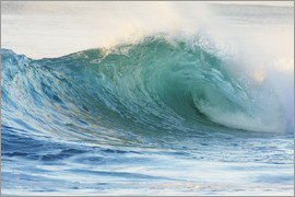 Vince Cavataio - Surfer waves in Hawaii