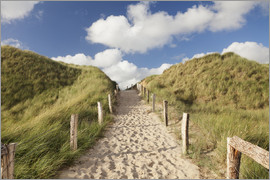 Markus Lange - Sylt, path through dunes
