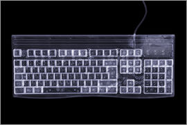 Mark Sykes - Computer keyboard, simulated X-ray