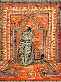 Ditz - Carpet Cat