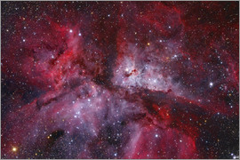 Lorand Fenyes - The Grand Carina Nebula in the southern sky.